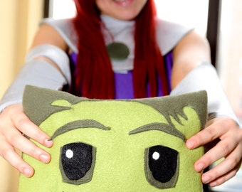 Teen Titans Animated Series Hero Character Pillow