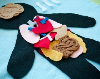 Human Anatomy Felt Set - Science Toy - Educational Felt Story - Flannel Board - Child Life - STEM