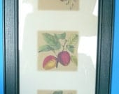SALE 12.00 -Framed Vintage French Country Art (1 of 2)