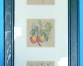 On Hold for ANDRA -SALE 12.00 - Framed French Country Art Panel (2 in set of 2)