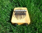 Electric Kalimba (thumb piano)