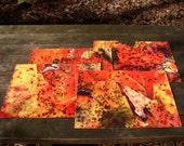Indoor/Outdoor Placemats featuring fall maple leaves, set of 4