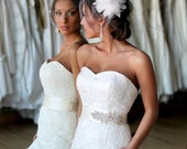 Birdcage Veil and Feather Hairpiece