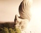 White Squirrels . . . Ceramic, Clay Relic . . . SQUIRREL . . . Folk Art . . . Miniature . . . OAK