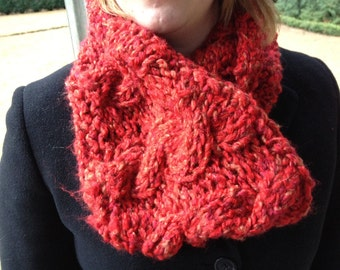 Lady Jane's Favorite Super Cozy Cabled Cowl
