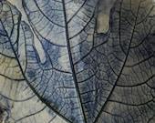 fig leaf textured decorative trinket or key plate
