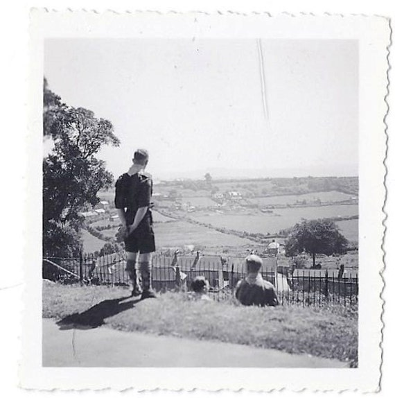 Vintage Photo: Scout looking out over the fields