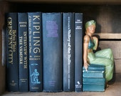 Black and Blue Vintage Books Instant Collection, Old Novels, Retro Library, Photography Prop