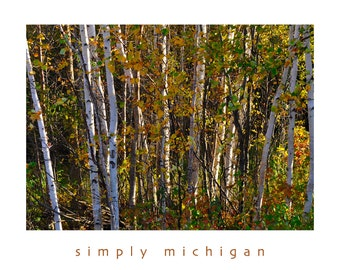 Fall in Michigan Note Cards