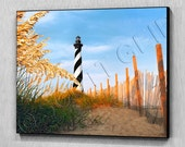 HATTERAS SEA OATS    ( Ready to hang wooden photo / art panel)