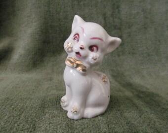 White and Raspberry Cat