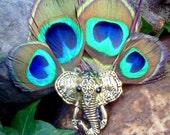 Lucky Elephant Peacock feather hair clip