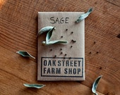 SAGE - perennial herb and flower seeds in an eco-friendly handmade recycled paper envelope