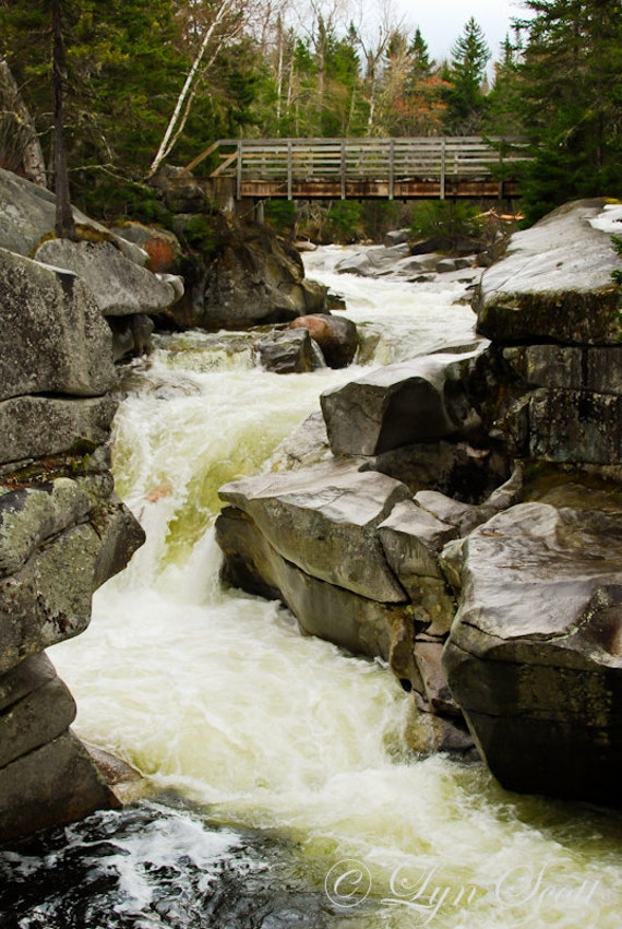 River -  Raging - Nature photography, landscape photography, sping, summer, fine art print, stream, new england
