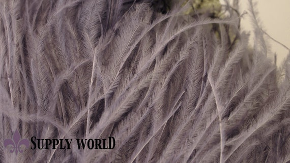 Ostrich Feather Fringe - Single Ply Ostrich Feather Fringe - Gray Ostrich Feather Fringe