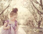 Sugar Plum Tutu Dress - Couture Collection - Girls Sizes 6-12 - Flower Girls, Weddings, Birthdays, Pageants