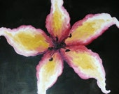 "RESERVED - Original Oil Painting- ""Black Pollen"" - White, Pink, and Yellow Surreal Lily on Black"