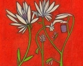 """Archival Fine Art Print of Original Drawing """"White Flowers""""  Free USA Shipping"""