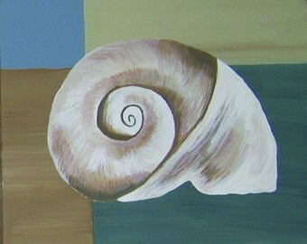 Shell on canvas