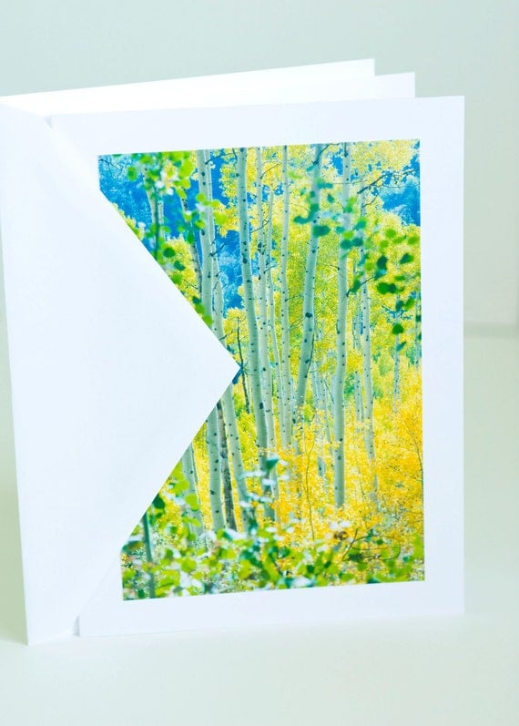 Aspen trees, photographic greeting card, yellow and green, handmade, blank, paper, vertical