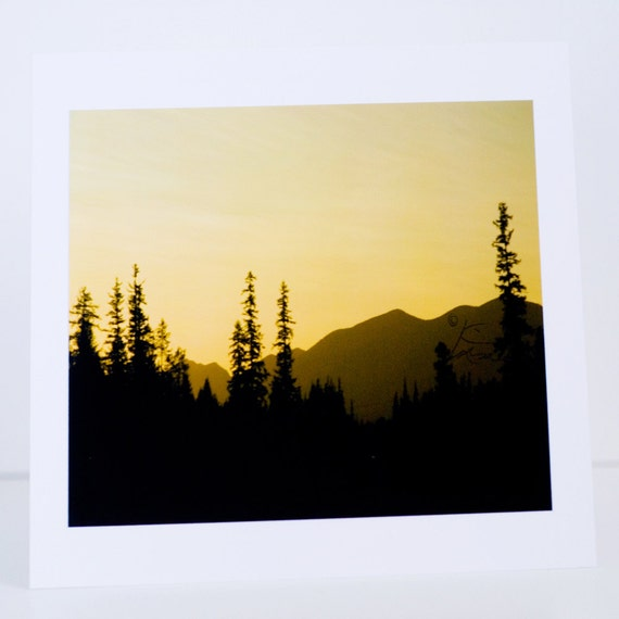 Montana, Mountains, Pine Trees, Sunset, Greeting Card, Photographic, Handmade, Blank, Paper, Horizontal