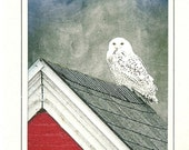Snowy Owl on Nubble Lighthouse Shed, Maine