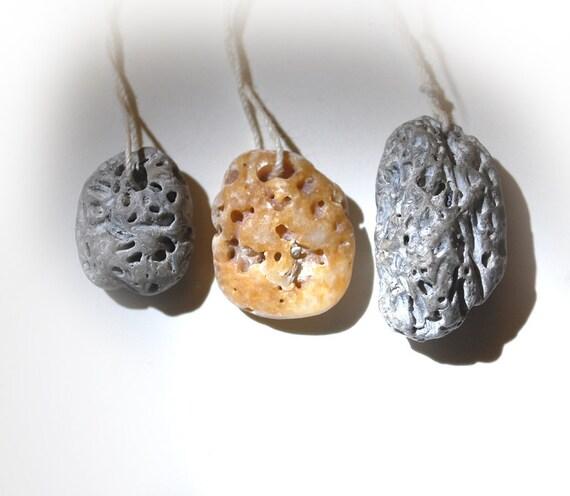 drilled false brain coral: shell pendants