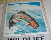 1944 Wildlife Conservation Stamp Album