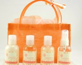 Bath and Body Travelers Set