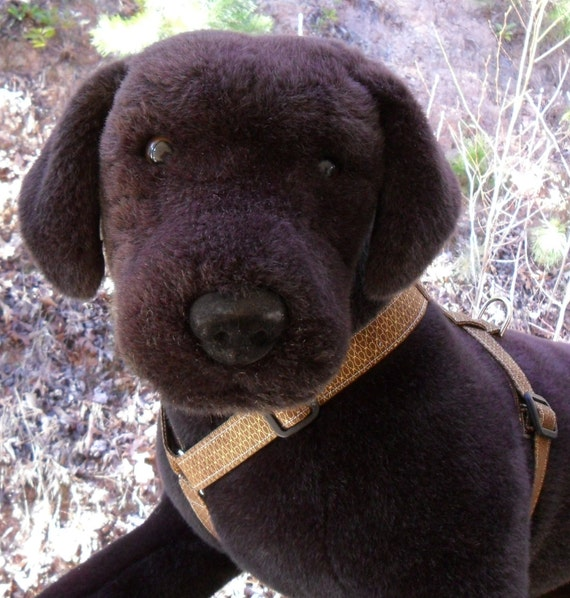 Your dog will enjoy taking walks with this handsome harness (large size) in a sophisticated brown with gold design..