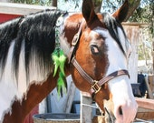 Rhythm Bead, Western Mane Clip in Multi Color Greens For That Special Horse