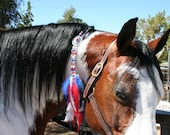 Rhythm Bead, Western Mane Clip in Red, White & Blue For That Special Horse