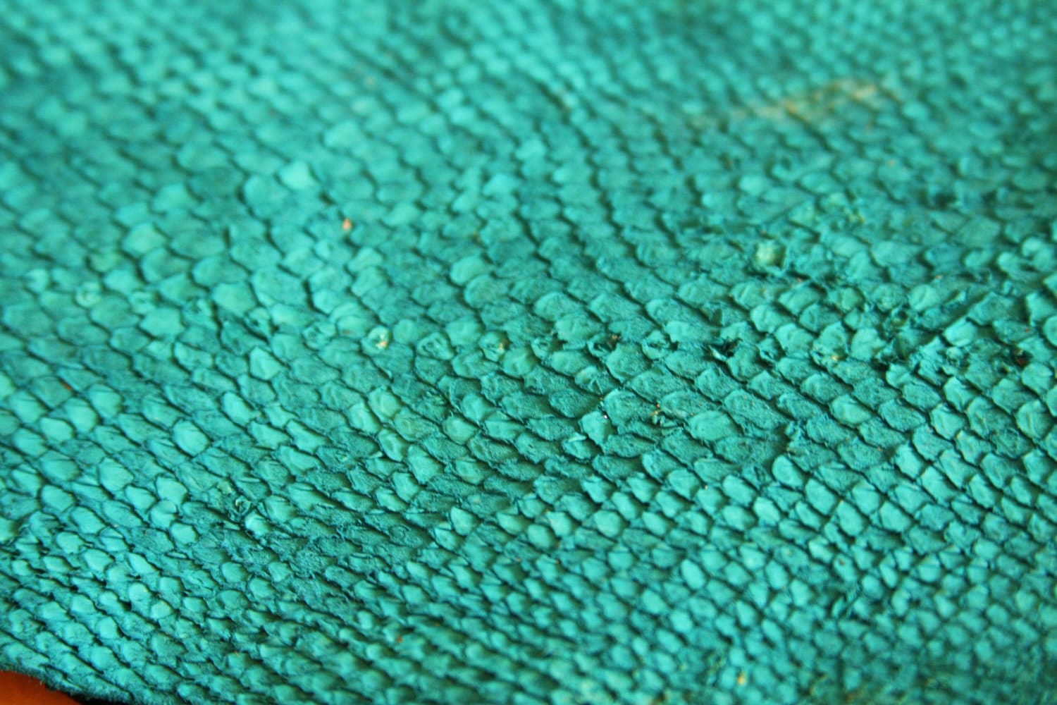 Green fish scales for Get fish scale