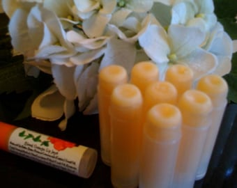 Lip Joy Natural and Nourishing Lip Balm Treatment - there is a reason they all say it's the BEST by Pura Gioia