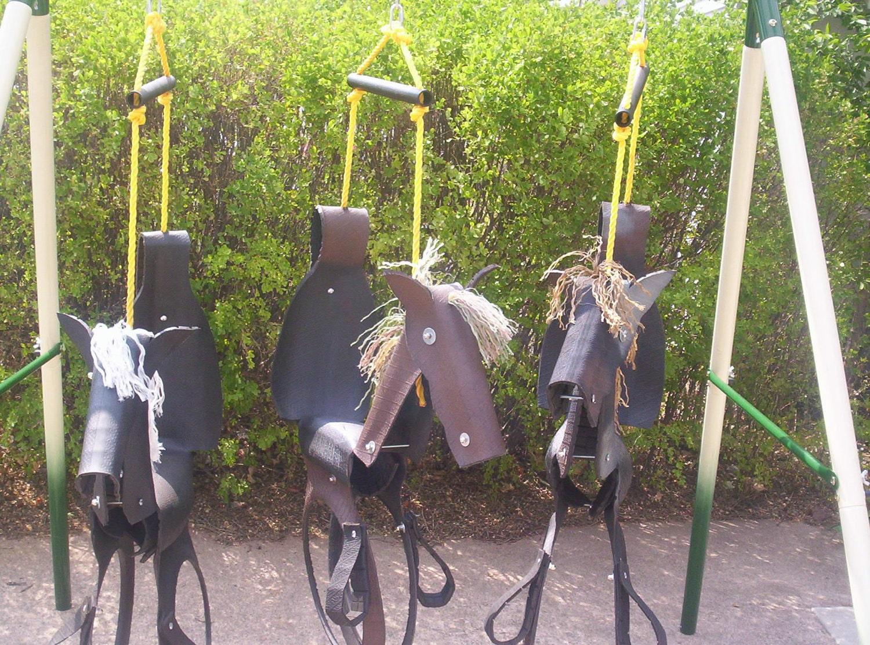 tire swing     horse