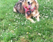 personalized bandana custom made or any sports team for your dog or cat reversable.