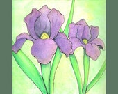 Spring Flower Series Iris Gouache Painting and Ink Matted Illustration Print