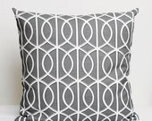 Designer Pillow Cover - shams - decorative covers- 18x18 Dwell Studio, grey