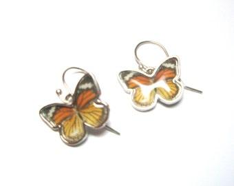 Butterfly  Earrings- Gift for her- HOT SALE