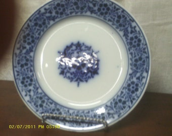 BLUE and WHITE PLATE 1920