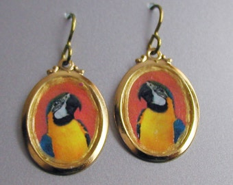 Parrot Love Earrings
