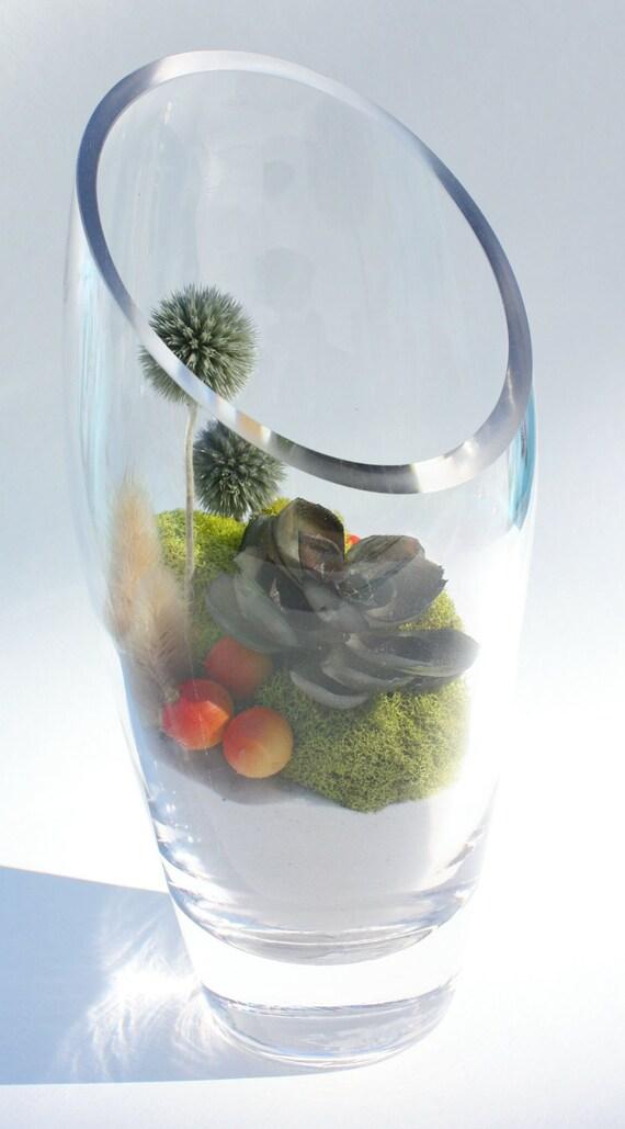 Care-Free Modern Succulent Terrarium, Large