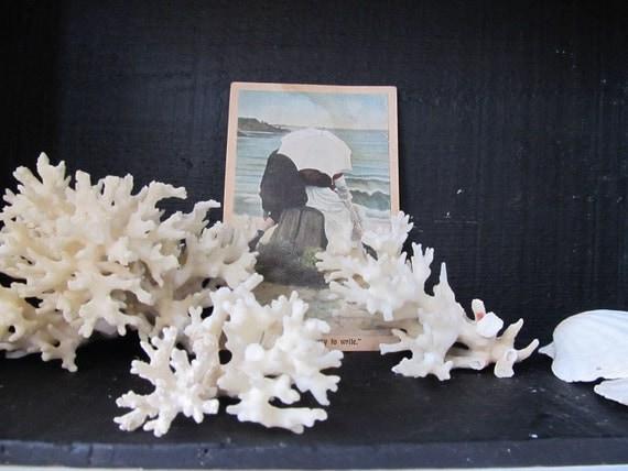 Set of three vintage white coral.