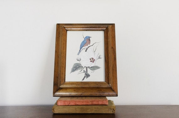 Bird and Flowers Picture- Blue Bird on Hibiscus Flower Print in Wooden Frame - Art Lamay - Spring Colors - Cottage Chic