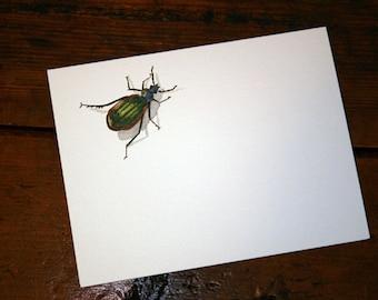 Caterpillar Hunter Note Card