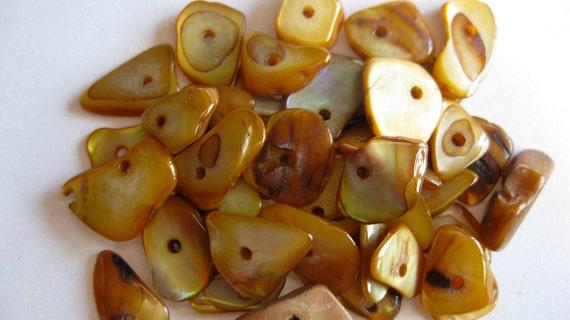 Mustard Shell Chip Bead Lot