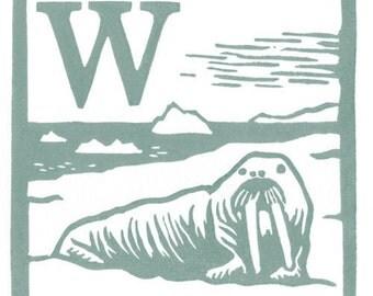 W - Walrus