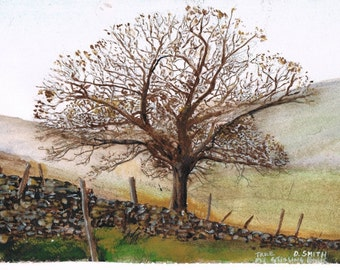 Tree at Stalling Busk  - Print 16 x 12 of Original Water Colour