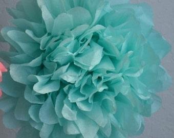 1 SMALL AQUA- Pom Pom kit- tissue paper poms // diy // wedding decoration // baby shower // party decor