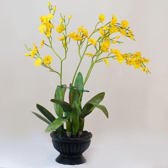 Silk Latex Oncidium Orchid Black Pot Artificial Faux Arrangement